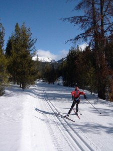 laurie xc ski